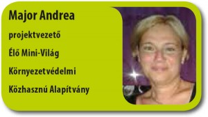 Major Andrea